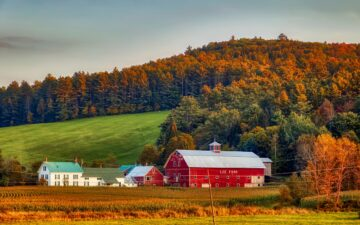 Living in New Hampshire - What is it like - Pros and Cons